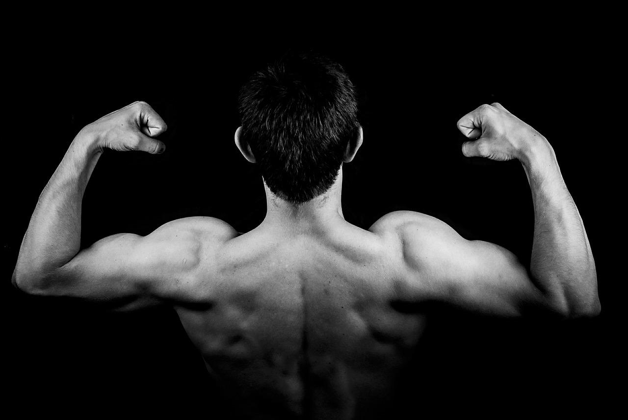 単関節種目vs多関節種目 筋力向上・筋肥大に効果的なのはどっち?