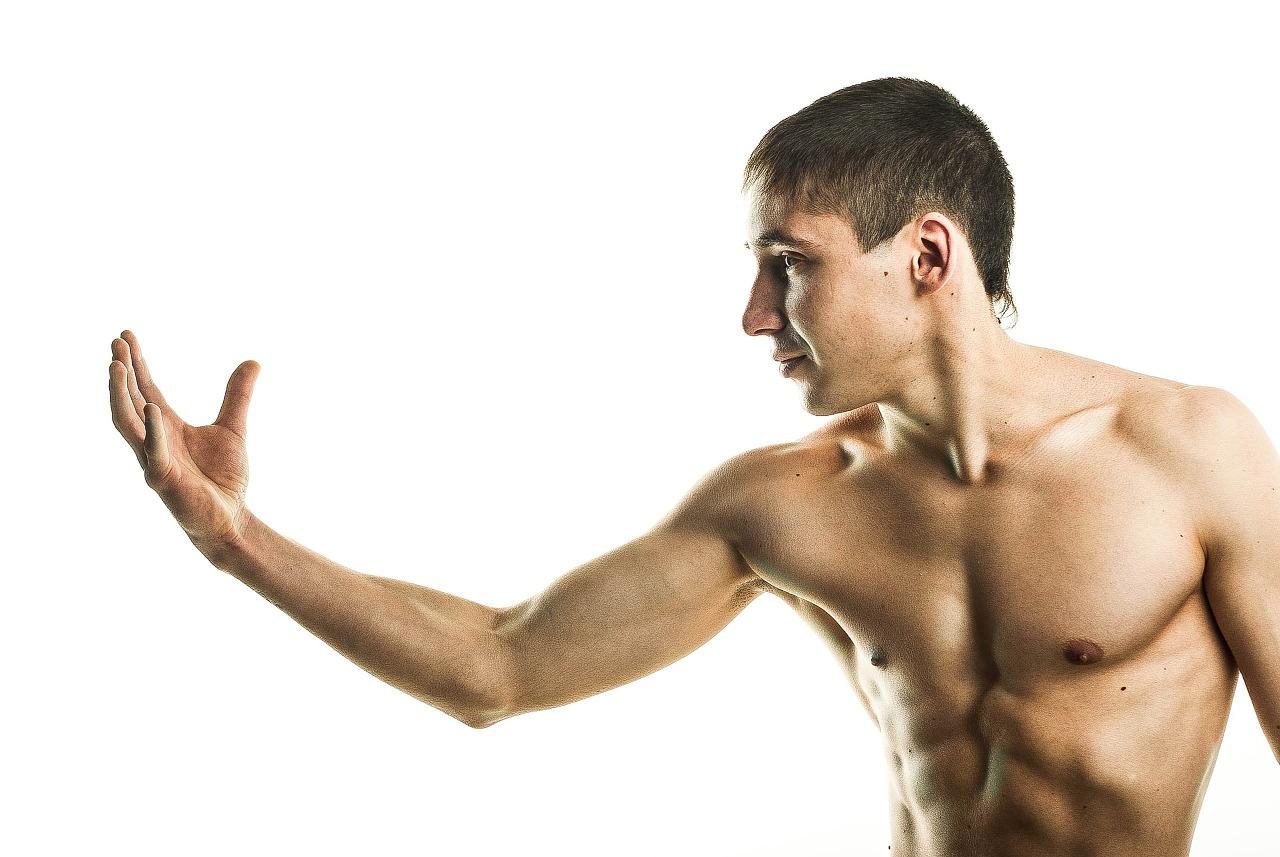 コンセントリック&エキセントリック 筋肉の活動様式