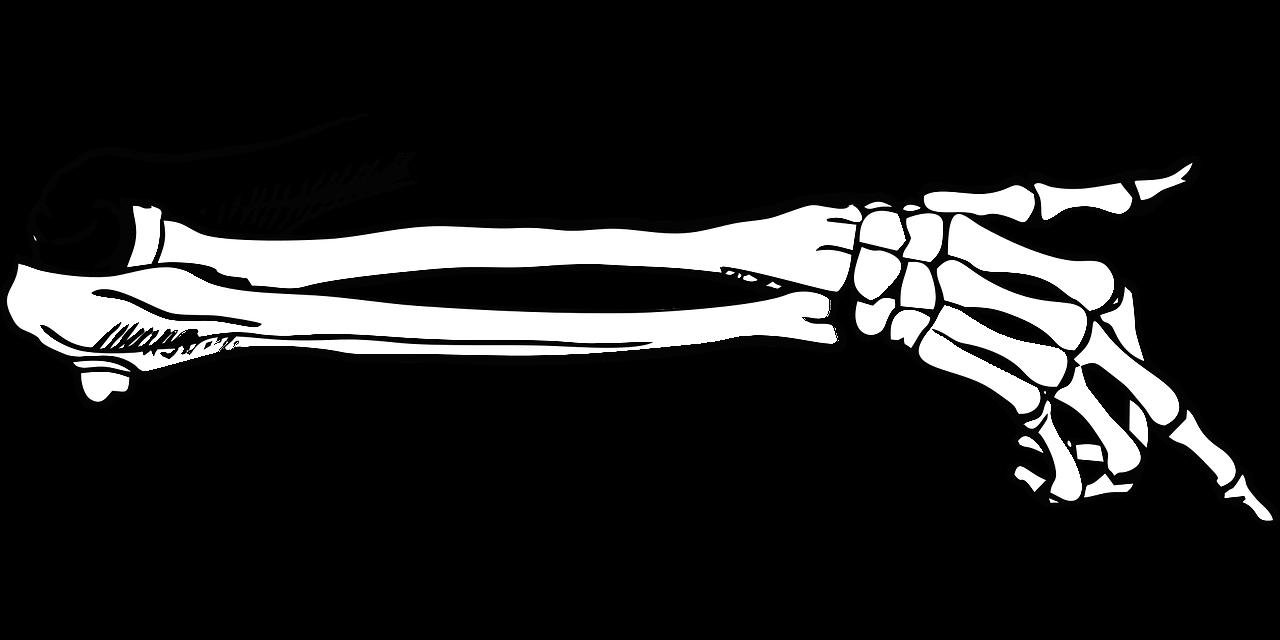 適切な筋トレは腱を強化させ骨密度を増加させ高血圧をも改善させる
